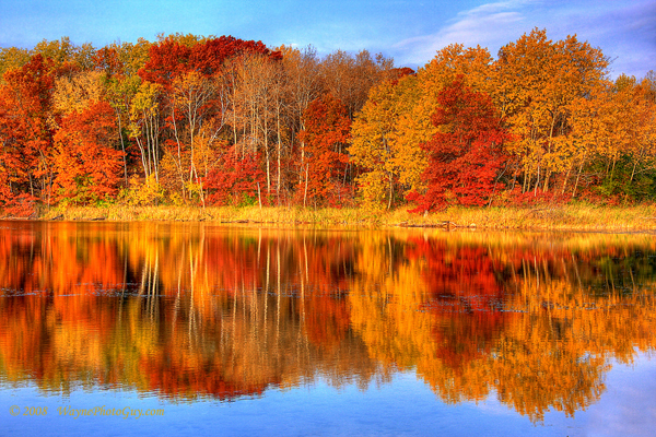 Autumn Reflections: Prints from Wayne Moran Photography